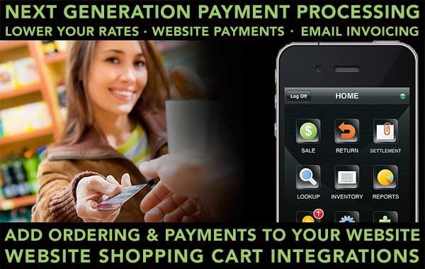 Website Card Payments Direct Through Processor